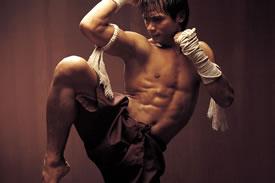 muay-thai-fenix-artes-marciales-gym-gimnasio